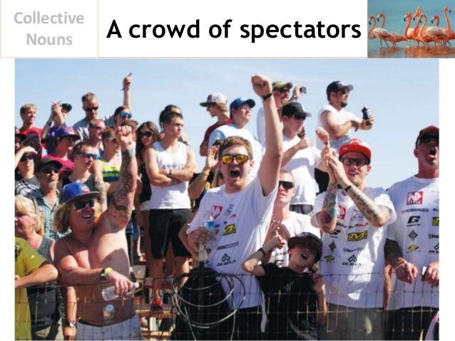 A crowd of spectators Collective Nouns