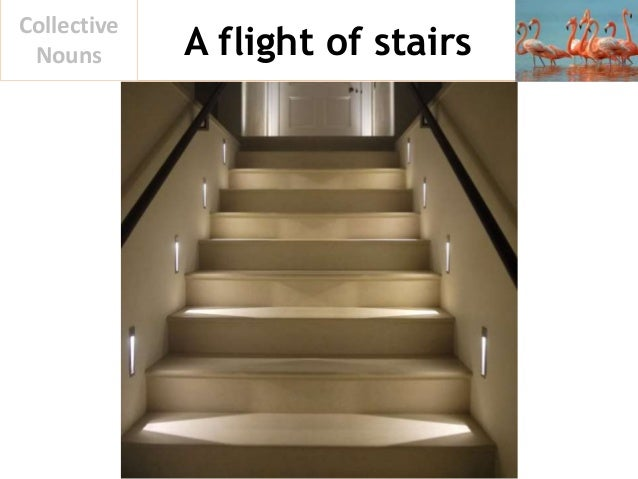 A flight of stairs Collective Nouns