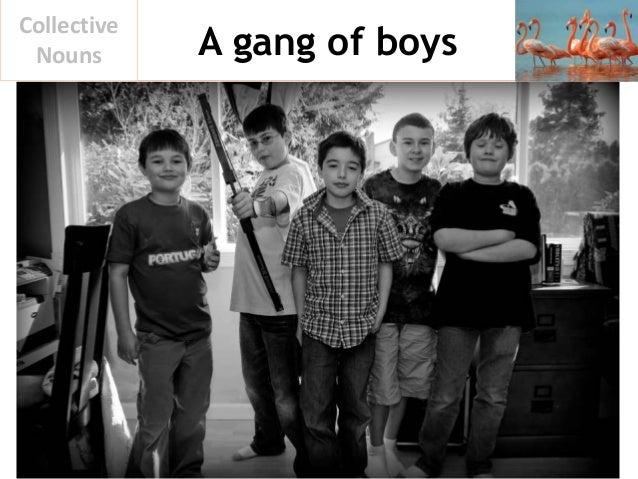 A gang of boys Collective Nouns