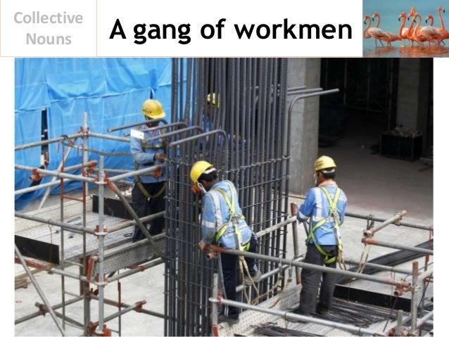 A gang of workmen Collective Nouns