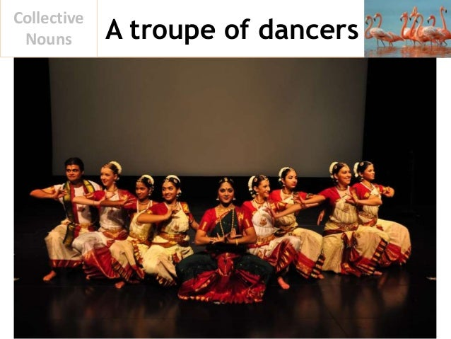 A troupe of dancers Collective Nouns