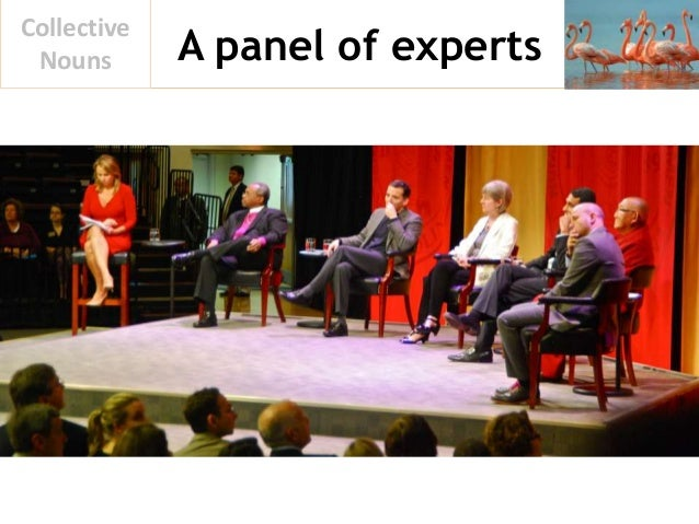 A panel of experts Collective Nouns
