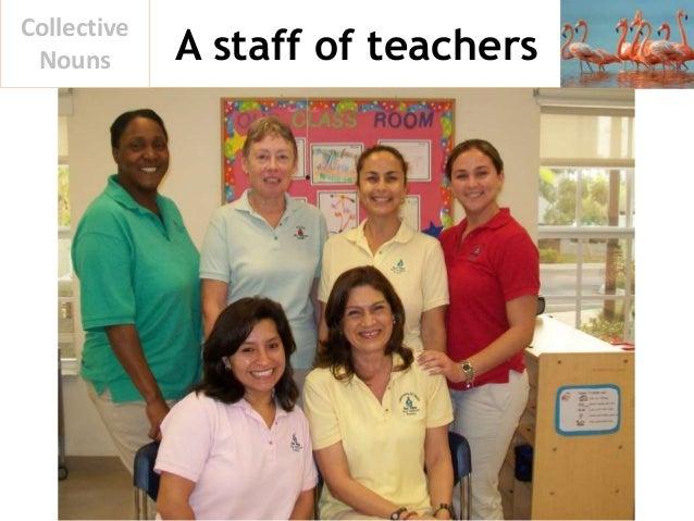 A staff of teachers Collective Nouns