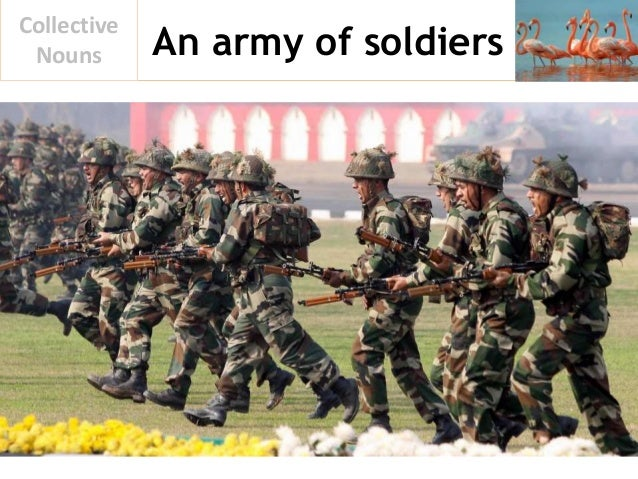 An army of soldiers Collective Nouns