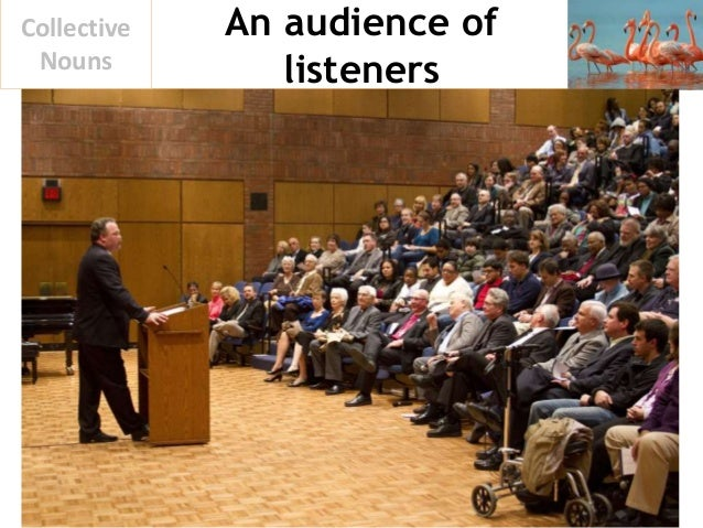 An audience of listeners Collective Nouns