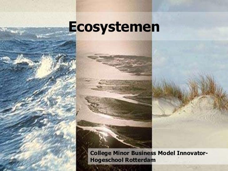 Ecosystemen  College Minor Business Model Innovator-  Hogeschool Rotterdam