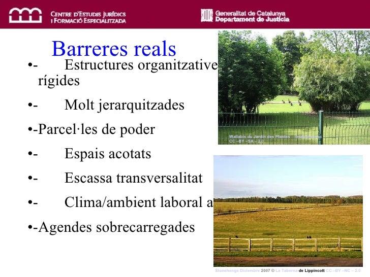 Barreres reals <ul><li>-  Estructures organitzatives  rígides </li></ul><ul><li>-  Molt jerarquitzades </li></ul><ul><li>-...