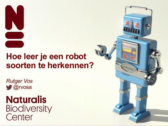 Hoe leer je een robot soorten te herkennen - Hoe een keuken te verlichten ...