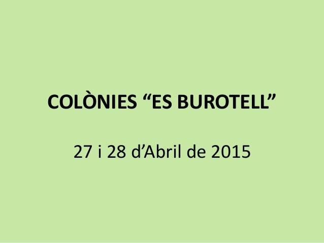 """COLÒNIES """"ES BUROTELL"""" 27 i 28 d'Abril de 2015"""