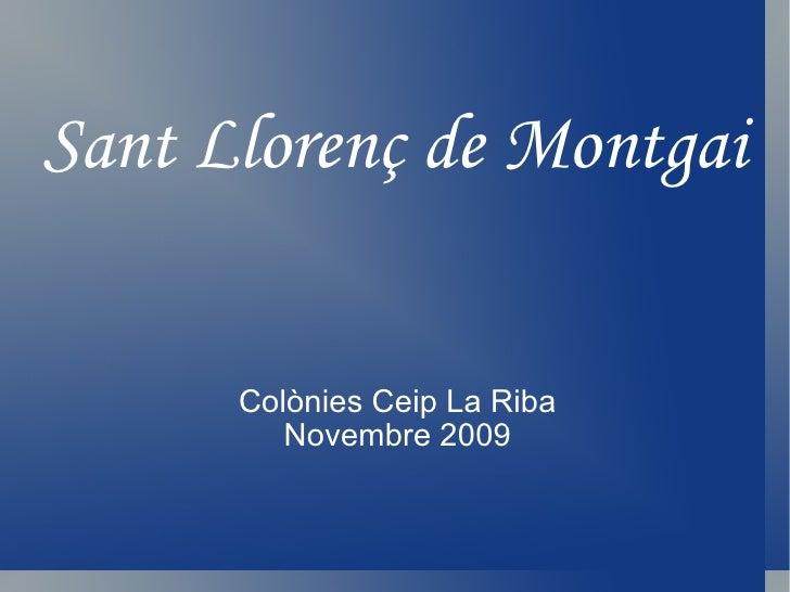 Sant Llorenç de Montgai Colònies Ceip La Riba Novembre 2009