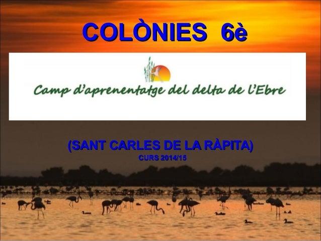 COLÒNIES 6èCOLÒNIES 6è (SANT CARLES DE LA RÀPITA)(SANT CARLES DE LA RÀPITA) CURS 2014/15CURS 2014/15