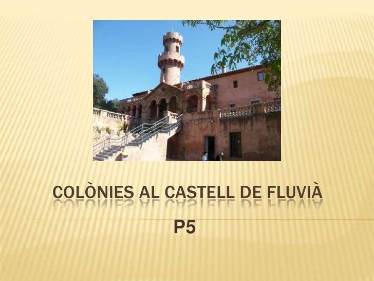 COLÒNIES AL CASTELL DE FLUVIÀ            P5