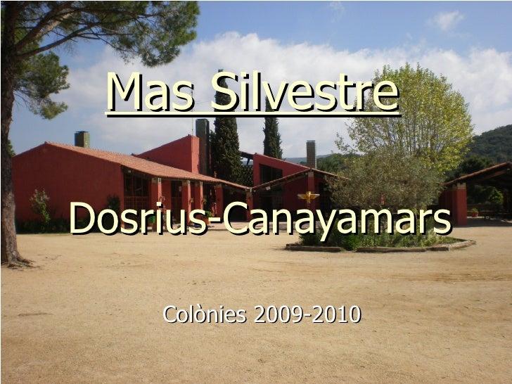 Mas Silvestre   Dosrius-Canayamars Colònies 2009-2010