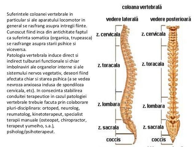 hernie in dureri de coloana vertebrala