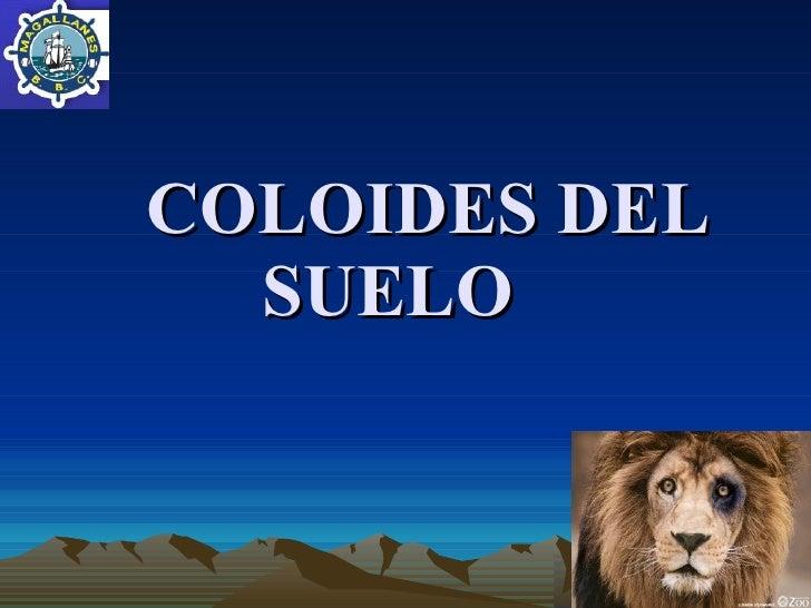 COLOIDES DEL SUELO