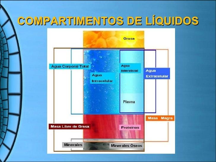 Coloides Slide 3