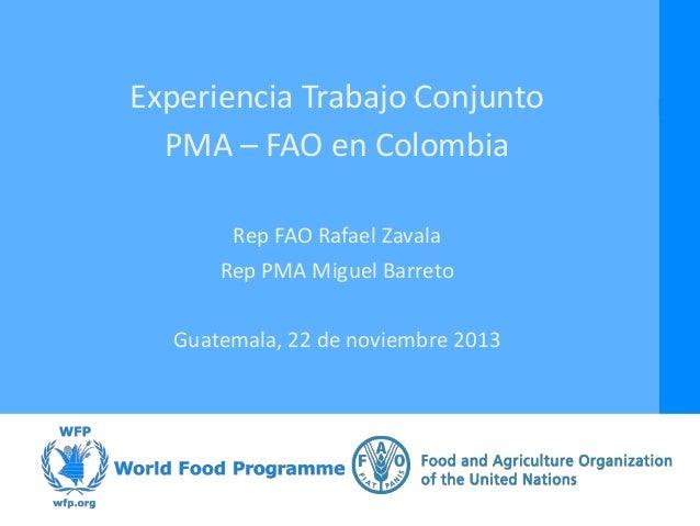 Experiencia Trabajo Conjunto PMA – FAO en Colombia Rep FAO Rafael Zavala Rep PMA Miguel Barreto Guatemala, 22 de noviembre...