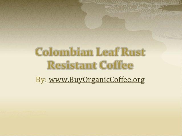 Colombian Leaf Rust Resistant Coffee By: www.BuyOrganicCoffee.org