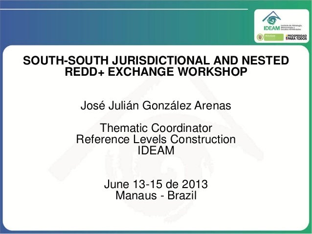 SOUTH-SOUTH JURISDICTIONAL AND NESTED REDD+ EXCHANGE WORKSHOP José Julián González Arenas Thematic Coordinator Reference L...