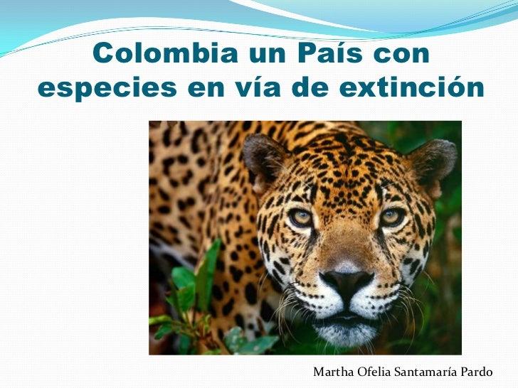 Colombia un País conespecies en vía de extinción                 Martha Ofelia Santamaría Pardo