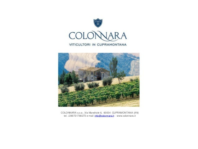 COLONNARA s.c.a. ,Via Mandriole 6, 60034 CUPRAMONTANA (AN) tel. +390731780273 e-mail: info@colonnara.it - www.colonnara.it