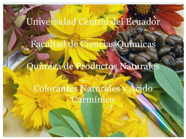 Universidad Central del Ecuador Facultad de Ciencias QuímicasQuímica de Productos Naturales Colorantes Naturales y Ácido  ...