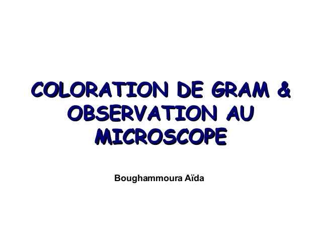 coloration de gram - Coloration De Gram Protocole