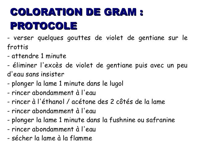 COLORATION DE GRAM PROTOCOLE EBOOK DOWNLOAD