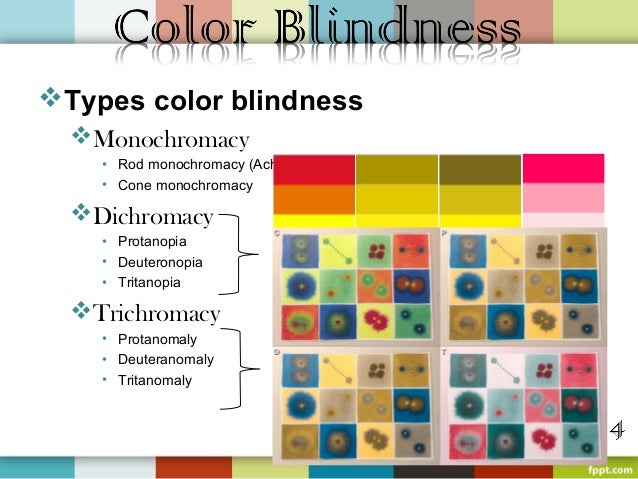 three basic types of color blindness Neuroscience for kids   cones are most sensitive to one of three different colors (green, red or blue)  someone who is color blind does not have a particular.