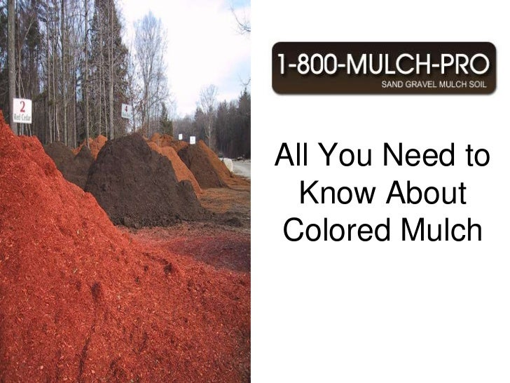 All You Need to Know About Colored Mulch<br />