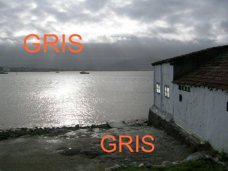 GRIS GRIS