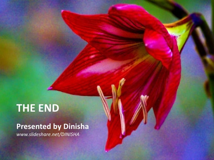 THE END<br />Presented by Dinisha<br />www.slideshare.net/DINISHA<br />