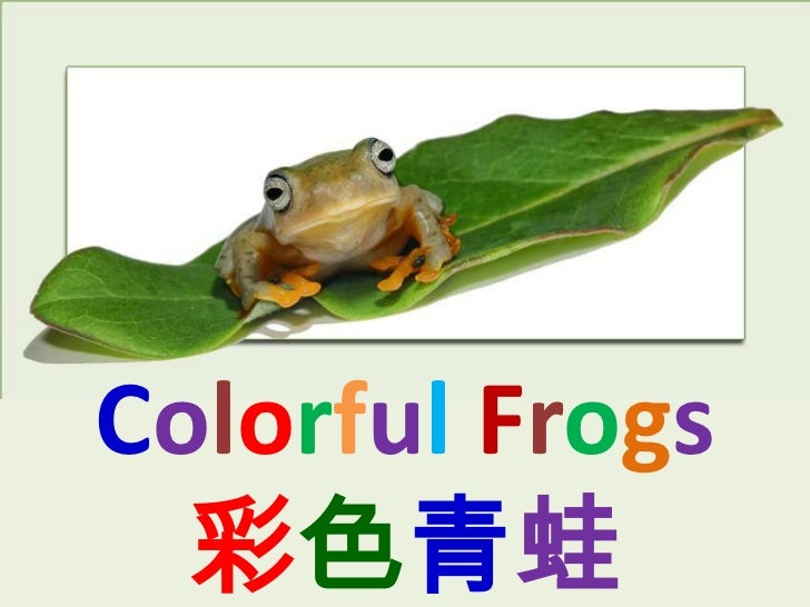 Colorful Frogs  彩色青蛙