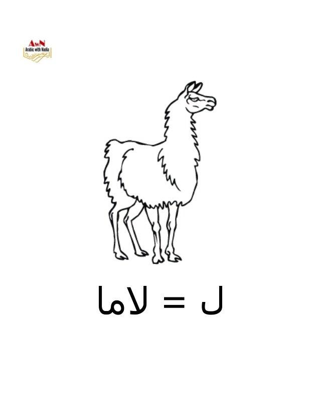 AWN Alphabet coloring book