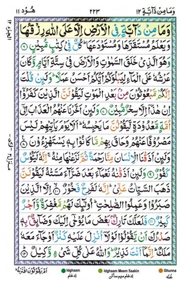 Tajwīdī Qur'ān | Juz 12 | وَمَا مِنْ دَابَّةٍ | PDF (القرآن جز ١٢)