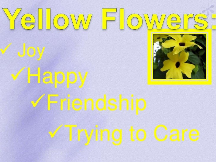 Colors of flowers and their meaning love 5 mightylinksfo