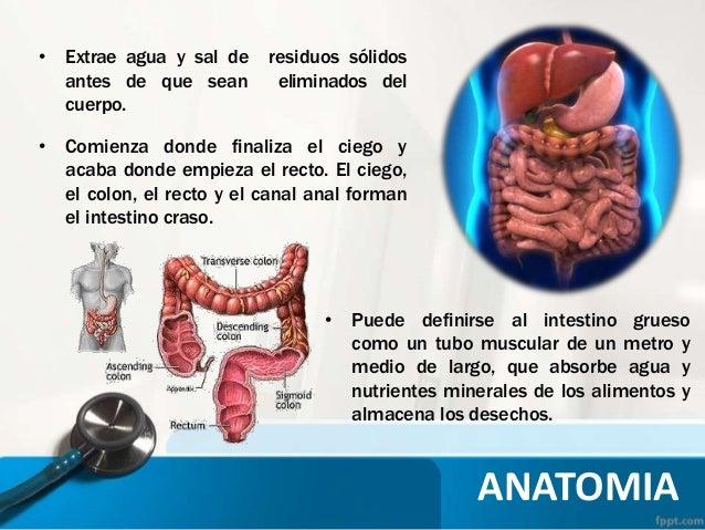COLOSTOMIA - TECNICA QUIRURGICA E INSTRUMENTAL