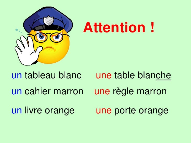 Attention !<br />blanc<br />becomes blanche<br />marron<br />orange<br />and<br />don't change<br />