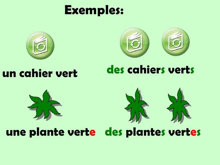 Exemples:<br />des cahiersverts<br />un cahier vert<br />uneplanteverte<br />desplantesvertes<br />