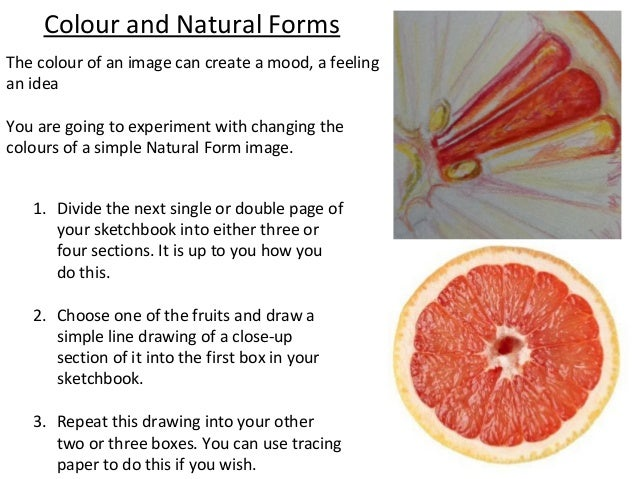 Colour and Natural FormsThe colour of an image can create a mood, a feelingan ideaYou are going to experiment with changin...