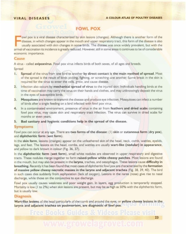 VIRAL DISEASES A COLOUR ATLAS OF POULTRY DISEASES Treatment There is no satisfactory treatment. Control I. Fowl pox can be...