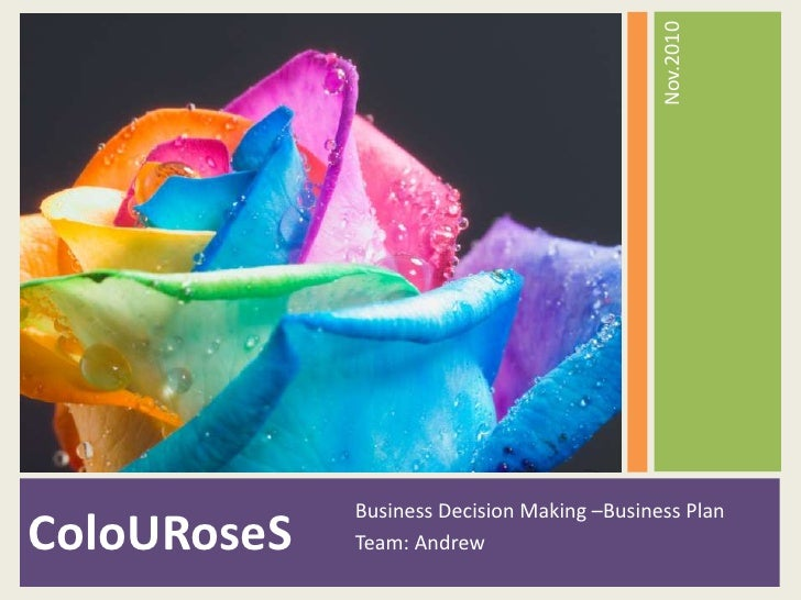 ColoURoseS<br />Business Decision Making –Business Plan <br />Team: Andrew<br />Nov.2010<br />