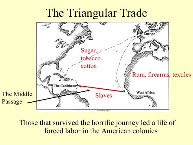 columbian exchange effects Librarything review user review - danallosso - librarything for environmental historians, the columbian exchange is one of those books that must be read.