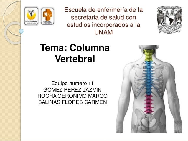 Escuela de enfermería de la secretaria de salud con estudios incorporados a la UNAM Equipo numero 11 GOMEZ PEREZ JAZMIN RO...