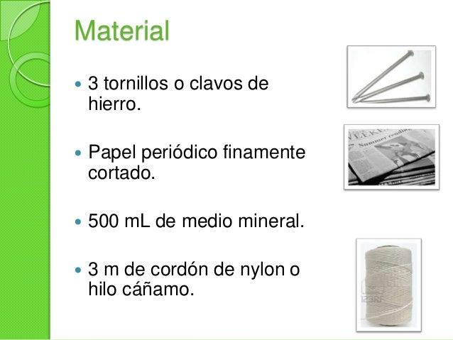 Material 8 portaobjetos conmuesca en uno de losextremos 1 espátula 1 pliego de papel autoadherible transparente(20 cm x...