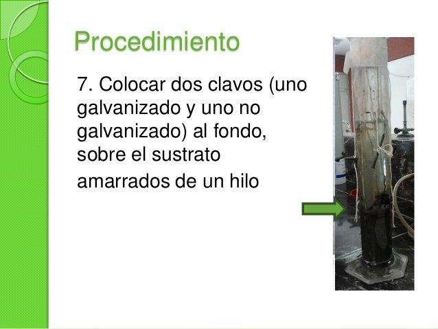 Procedimiento8. Marcar el nivel de aguay cubrir la boca de labotella con el plástico autoadherible. Hacer algunasperforaci...
