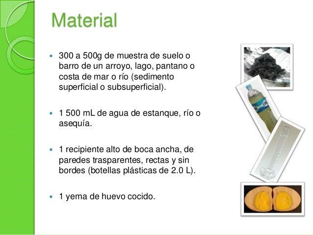 Material 3 tornillos o clavos dehierro. Papel periódico finamentecortado. 500 mL de medio mineral. 3 m de cordón de ny...