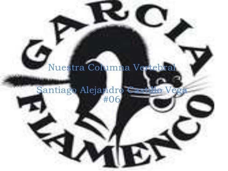 Nuestra Columna Vertebral<br />Santiago Alejandro Castillo Vega #06<br />