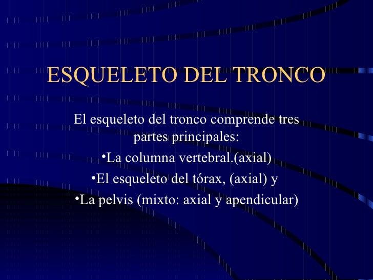 ESQUELETO DEL TRONCO El esqueleto del tronco comprende tres           partes principales:      •La columna vertebral.(axia...