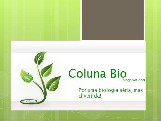 Oque? O  Coluna Bio é um blog de compartilhamento de conteúdo que permite auxiliar estudantes universitários a encontrar ...